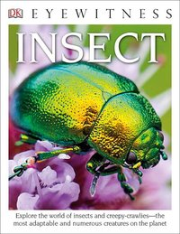 Insect ( DK Eyewitness Books )