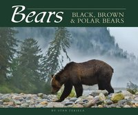 Bears: Black, Brown & Polar Bears